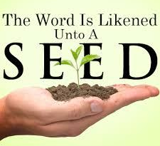 the seed word